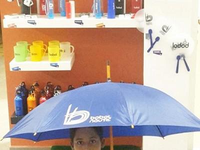 Parapluie528x960compresse